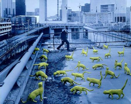 CATS IN PARIS, ©1993 Sandy Skoglund
